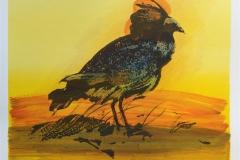 Fugl Serigrafi håndkolorert (21x25 cm) kr 1600 ur