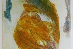 Sommerfuglvinge Collagrafi 45,5x37,5 cm 3000 ur