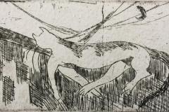Katteliv Etsning (5x10 cm) kr 230
