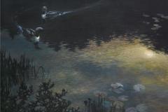 Nocturne-Storlom