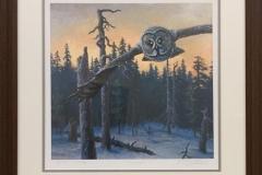 Lappugle Giclee-trykk (34x34 cm) kr 3000 mr
