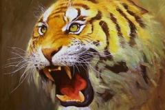 Sulten tiger Oljemaleri 50x60cm 5000,-kr m.r.