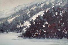 Vintertaake Litografi 24x32cm 800,-kr u.r.
