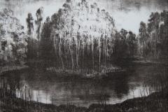 Stille Litografi 22x31 cm 1700 ur