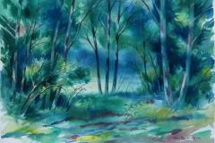 Lysning Akvarell 37x52,5 cm 2500 ur