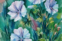 Malva I Akvarell 52,5x37 cm 2500 ur