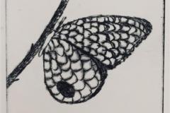 Kvist Koldnål (6x9 cm) kr 600 ur