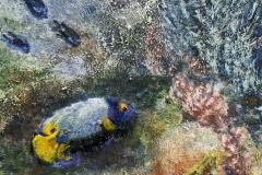 Korallrev II Oljemaleri 30x30 cm 3000 ur