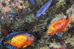 Korallrev III Oljemaleri 20x20 cm 1200 ur