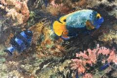 Korallrev IV Oljemaleri (24x30 cm) kr 2500 ur