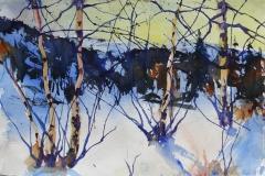 Vinter 1 Akvarell 38x56 cm 4000 ur