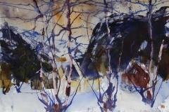 Vinter 6 Akvarell 38x56 cm 4000 ur