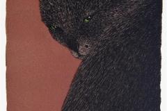Katt Litografi 25x16,5 cm 1600 ur