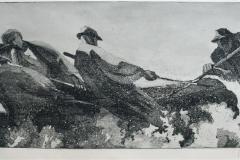 Toemmerfloeting Radering 27,5x68cm 1800,-kr u.r.