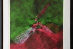 ButterflyEffect mørkgrønn Digigrafikk (50x50 cm) kr 5100 mr