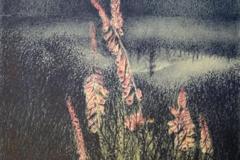 Sommernatt Litografi 38,5x27 cm 1900,-kr u.r.