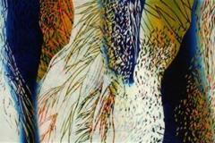 Naturens fargekontraster Lino 42x64 cm 3300 ur
