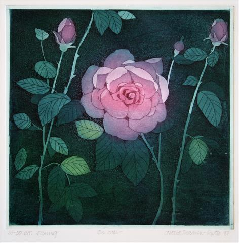 En rose Etsning 25x25 cm 1150 ur