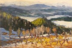 Tidlig-vinter-Bolkesjoe-Akrylmaleri-30x40cm-4500-kr-m.r