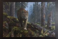 Gaupe i gammelskog Oljemaleri (80x120 cm) kr 80000 mr