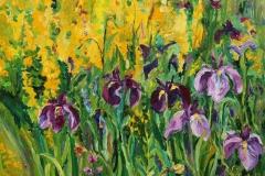 Iris Oljemaleri 50x70 cm 6000 ur