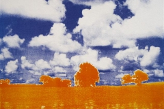 Landscape I Photolito 22,5x29,5 cm 1000,-kr u.r.