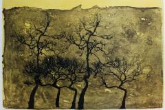 Skog II Seriegrafi 47x69 cm 3800 ur