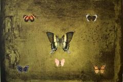 Sommerfugler LItografi 48,5x65 cm 3000 ur
