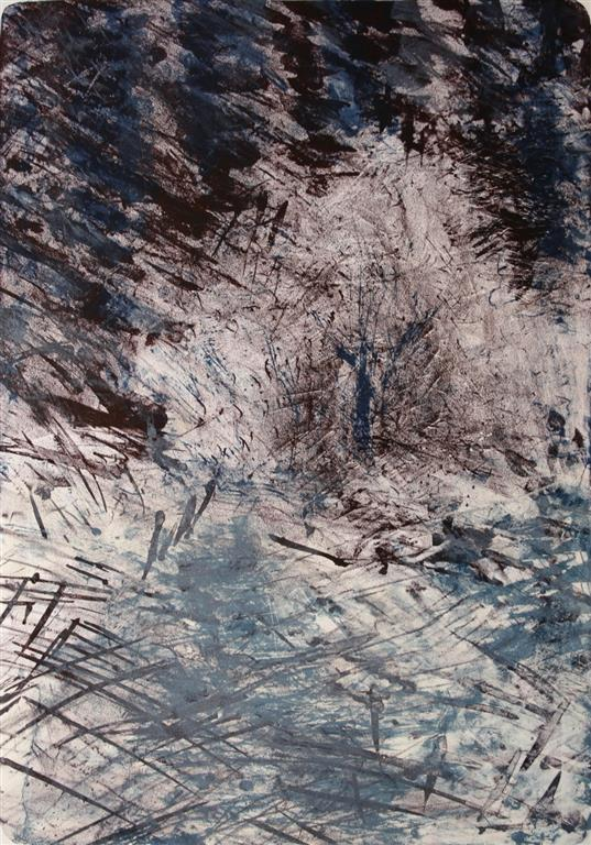 Rimfrost Litografi 54x38 cm 1000 ur