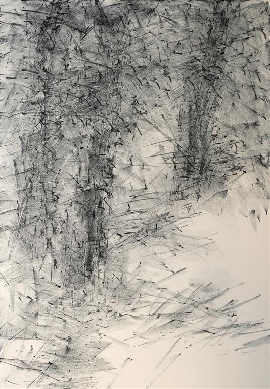Vinter Litografi 53x37 cm 850 ur
