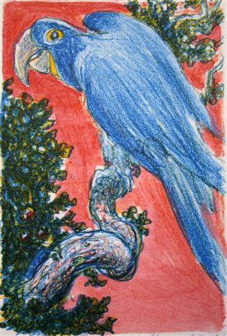 Papegoeye Litografi 15x10cm 600,-kr u.r.