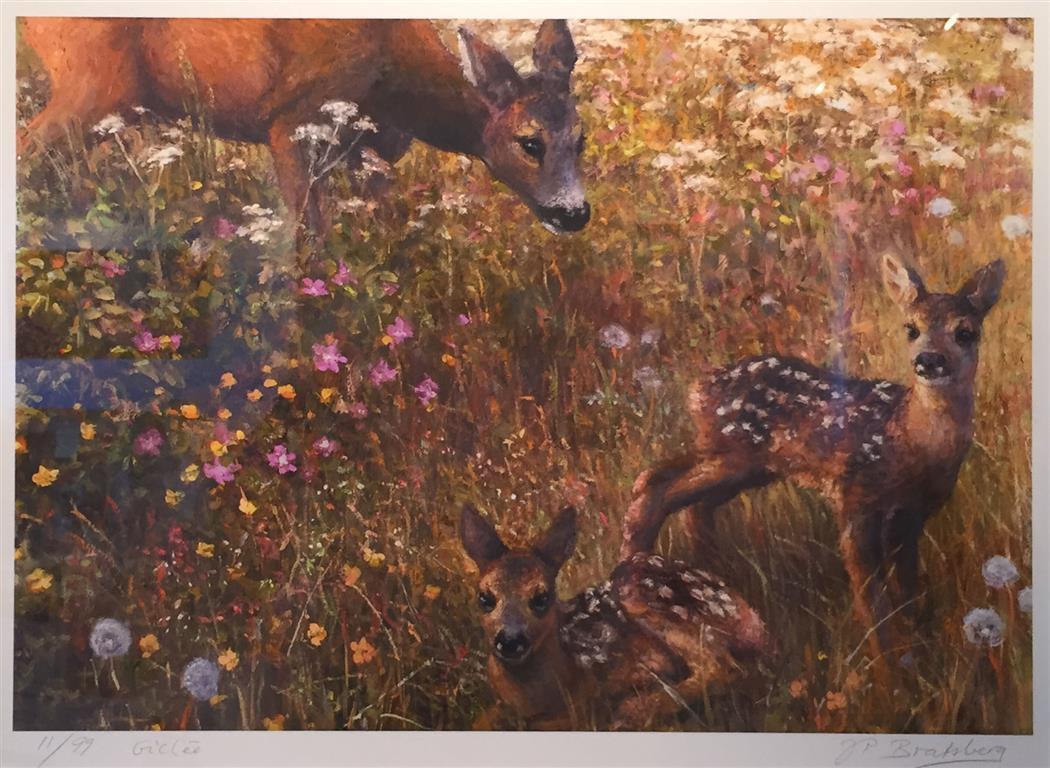 Sommerengens hemmelighet Giclee-trykk 34x50 cm 3500 mr