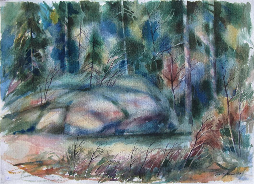 Skogsholt Akvarell 37x52,5 cm 2500 ur