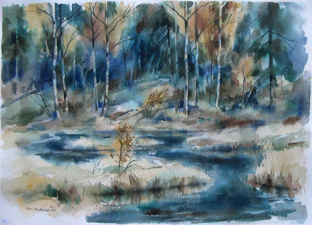 Skogstjern Akvarell 37x52,5 cm 2500 ur