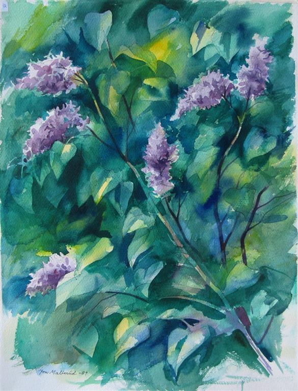 Syriner Akvarell 52,5x37 cm 2500 ur