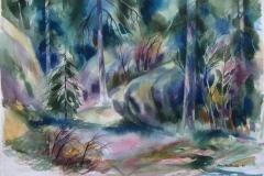 Rasteplassen Akvarell 37x52,5 cm 2500 ur