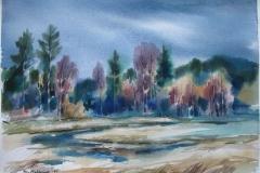 Vaat terreng Akvarell 37x52,5 cm 2500 ur