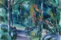 Veien Akvarell 52,5x37 cm 2500 ur