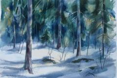 Vinterskog Akvarell 37x52,5 cm 2500 ur
