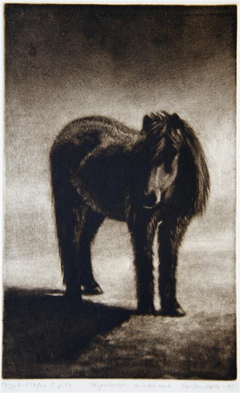 Skyroshourse-winter coat Mezzotint 26x16,5 cm 1500 ur
