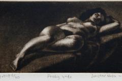 Frodig ynde Mezzotint 8x14,5 cm 1500 mr