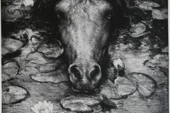 Noekken sort Litografi 40x30cm 3500,-kr u.r.