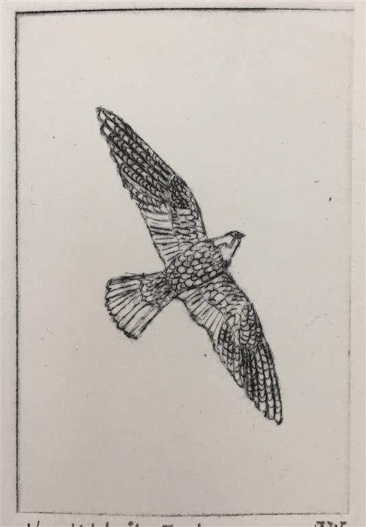 Fugl Koldnål (9x6 cm) kr 600 ur