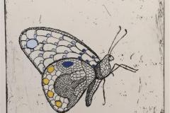 Butterfly Etsning håndkolorert (12x9 cm) kr 800 ur