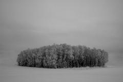 Tung desember Digiprint (37x50 cm) kr 2600 ur