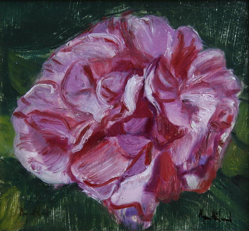 Stor rose Oljemaleri 21x23 cm 2000 mr