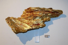 Goldwing Driftwood, blattgold, colour, akrylsokkel 6000