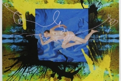 The bird Digigrafikk (40x40 cm) kr 5000 ur