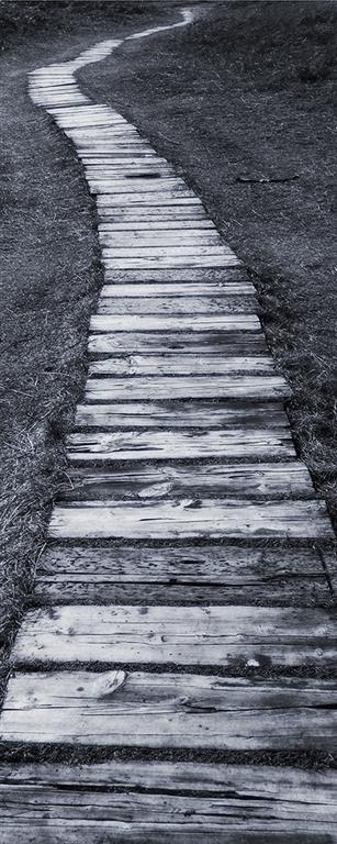 Boardwalk Digitalprint på lerret (100x40 cm) kr 3800 ur