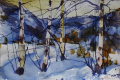 Vinter 11 Akvarell 38x56 cm 4000 ur
